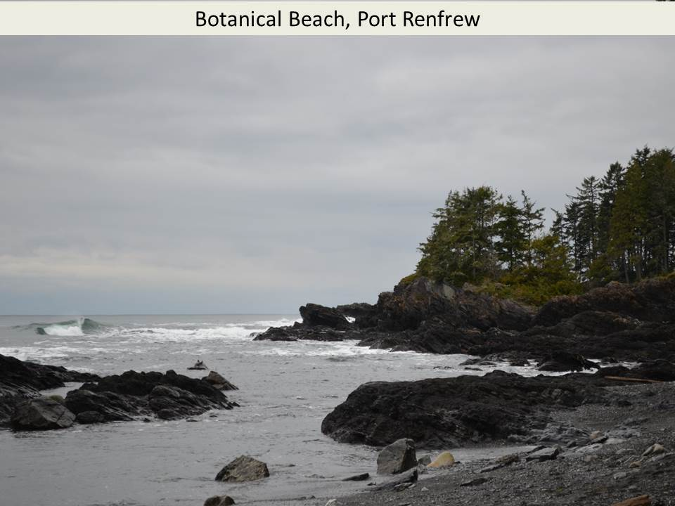 Botanical Beach, Port Renfrew